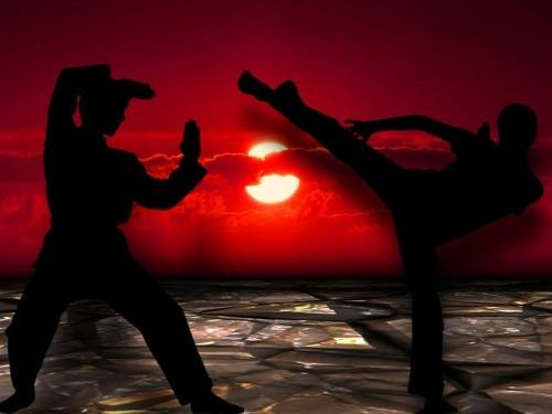 which-martial-art-should-i-learn-first